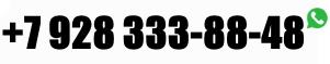 +7 928 333-88-48